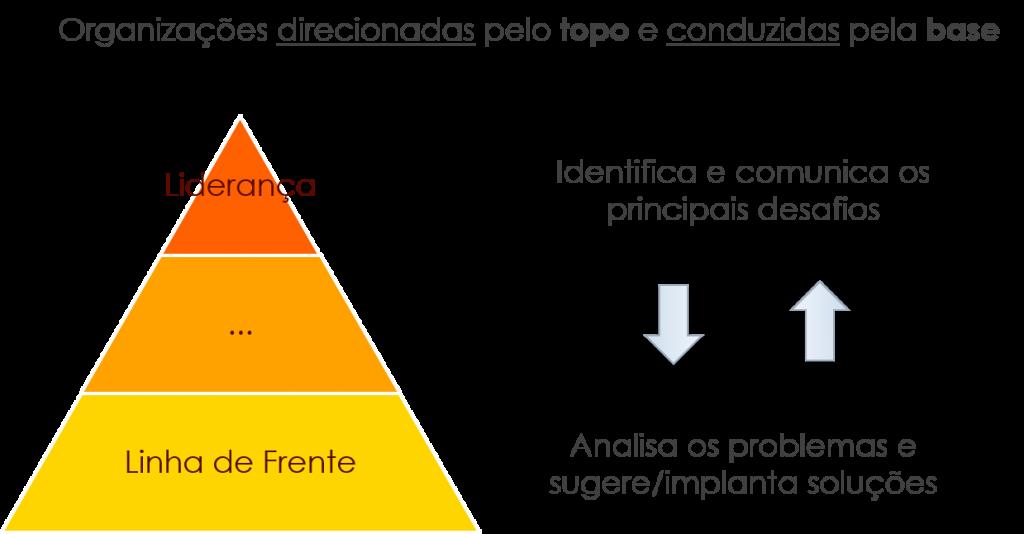 Organizações Guiadas por Ideias